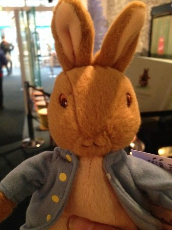 The World of Beatrix Potter: Picked up a very cute toy from the gift shop!