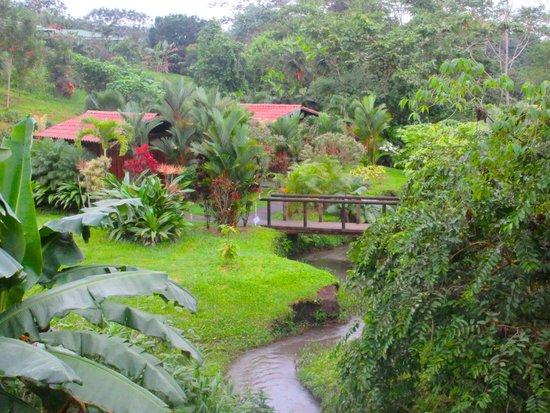 Arenal Manoa Hotel: resort grounds