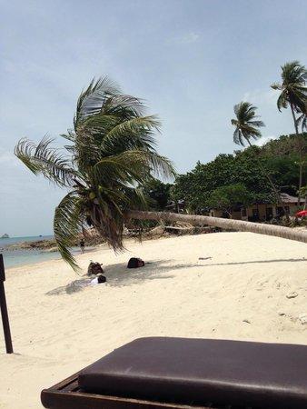 Melati Beach Resort & Spa: La spiaggia