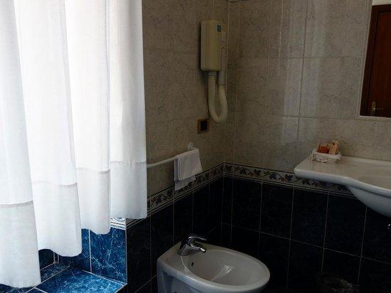 Hotel Raffaello : bathroom