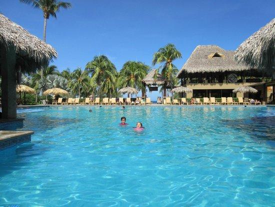 Flamingo Beach Resort & Spa: pool