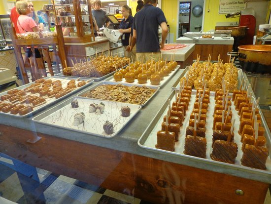 Bear Creek Gifts And Bear Creek Fudge Factory: BEAR CREEK GIFTS AND FUDGE FACTORY