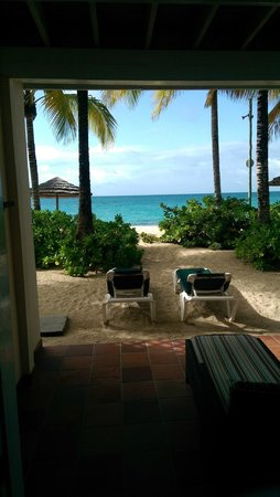 Galley Bay Resort: The view outside our back door/patio