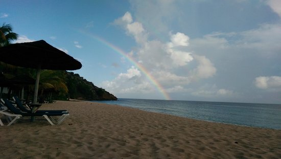 Galley Bay Resort: Rainbow after a morning shower