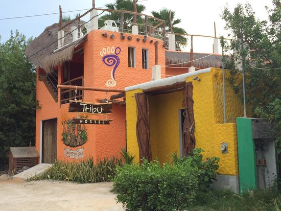 Tribu Hostel: The Hostel