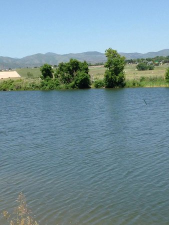 Chatfield State Park : Great ponds at the dog park.