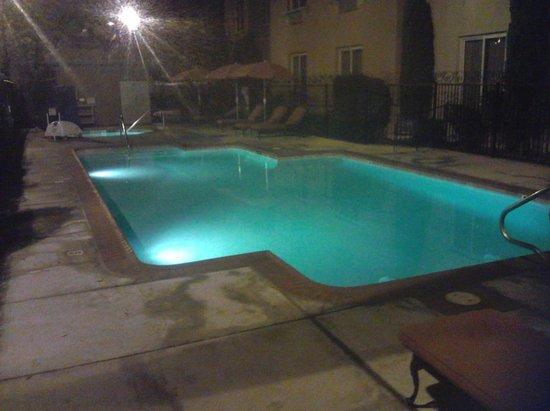 Ayres Hotel Seal Beach : Pool & Spa