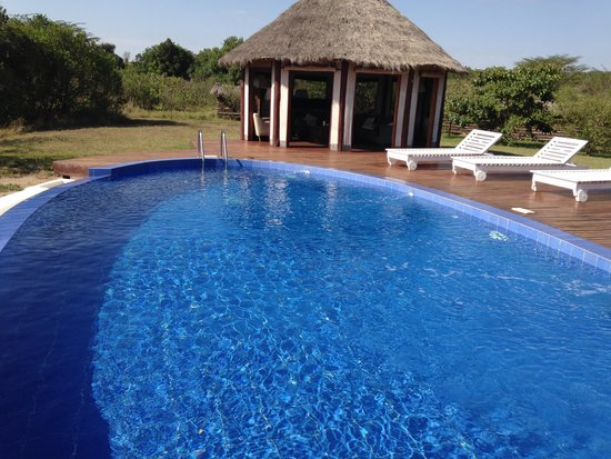 Ngerende Island Lodge: Pool lounge