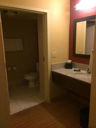 Courtyard by Marriott Orlando Downtown : Separate sink and toilet area with great hair and bath products (towels were stiff though)