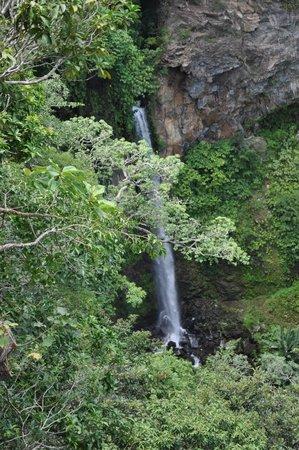 Hotel Borinquen Mountain Resort Activites: Waterfall