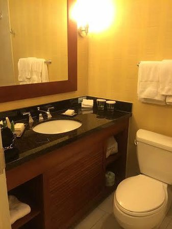 Hilton Tampa Downtown : Small bathroom but totally fine for 1 person