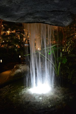 Gaylord Opryland Resort & Convention Center: One of the many different falls in the areas around the Resort