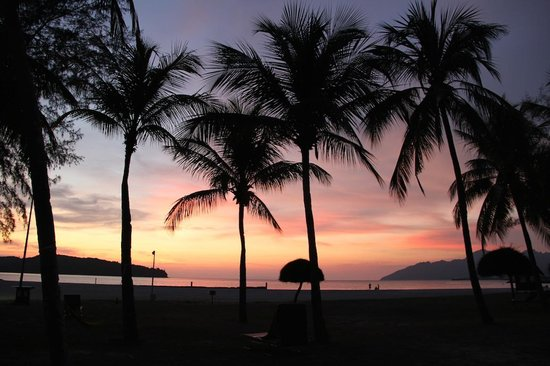 Meritus Pelangi Beach Resort & Spa, Langkawi: Every night we saw this...