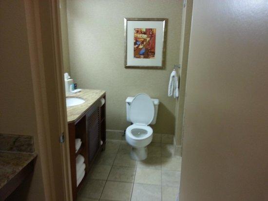 Crowne Plaza Houston River Oaks: bathroom (1613)