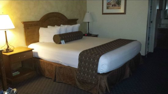 BEST WESTERN Casa Grande Inn: Kingsize bed