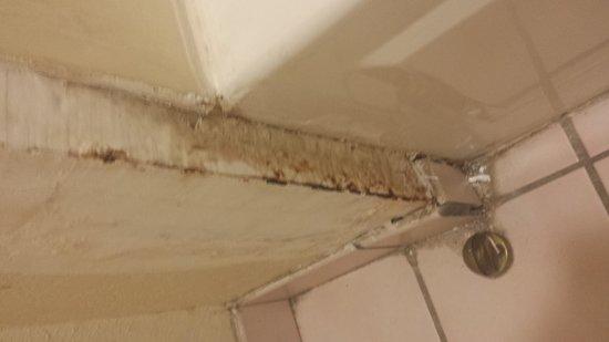 Super 8 Hammond: rotted corner of bathtub
