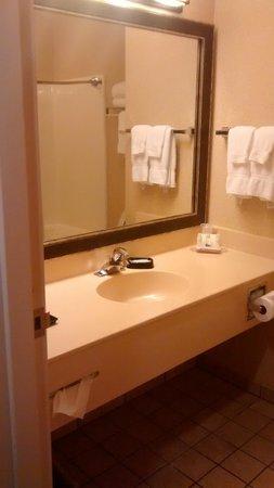 BEST WESTERN PLUS River Escape Inn & Suites: Queen suite.