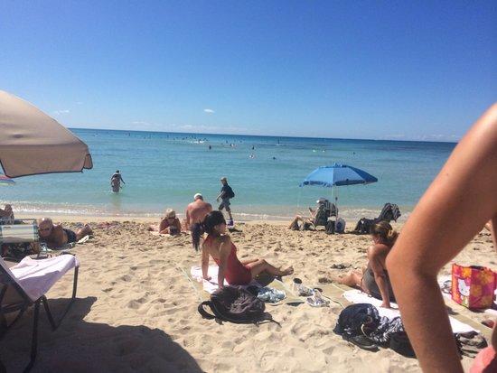 Moana Surfrider, A Westin Resort & Spa : Beach behind the hotel