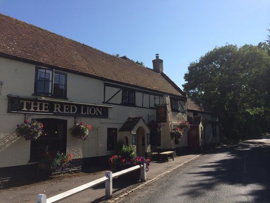 The Red Lion Boldre: Quintessential new forest pub