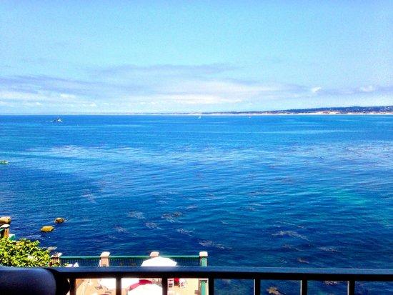 Monterey Plaza Hotel & Spa: Simple ocean view room