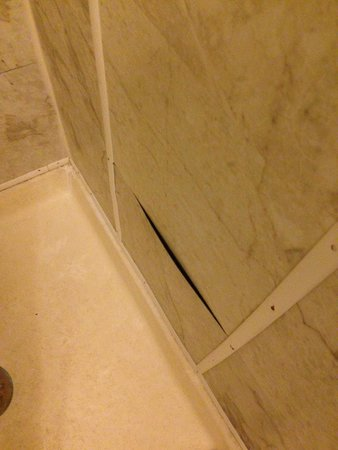 Town Motel: Shower tiles are peeling off. I'm sure there's no mold in there, right?