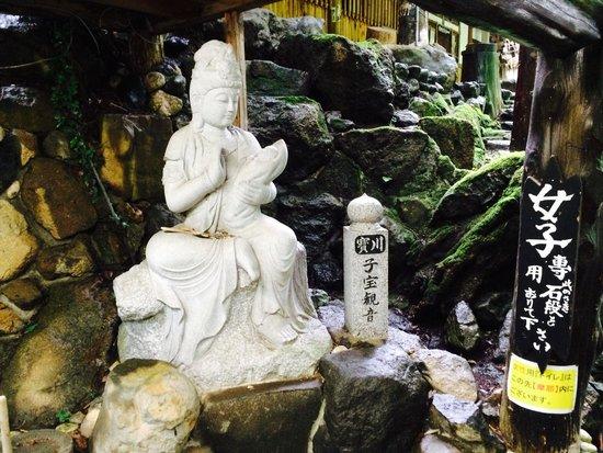 Takaragawa Onsen : Onsen Hot Spring