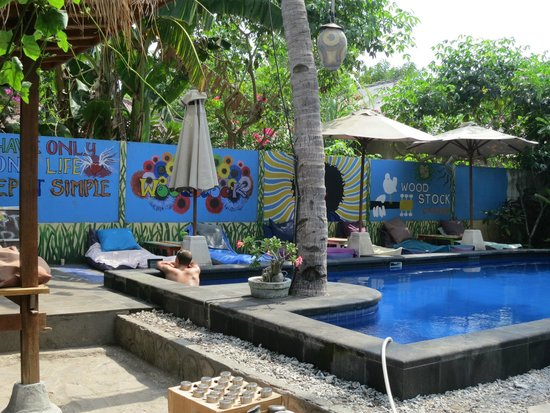 Wood Stock Home Stay : Pool