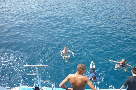 Ocean College Dive Centre : Swimming during lunch break!
