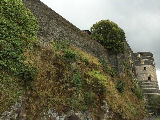Castle of Angers: le chateau