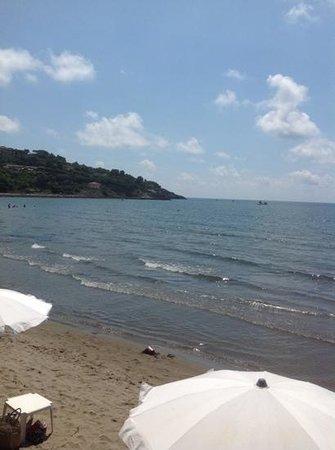 Spiaggia della Feniglia: particolare
