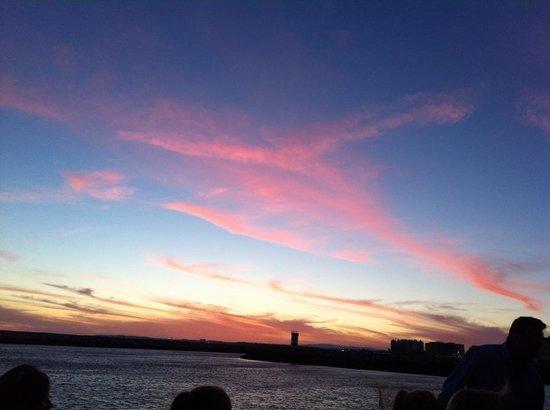 Algarve Seafaris : sunset cruise