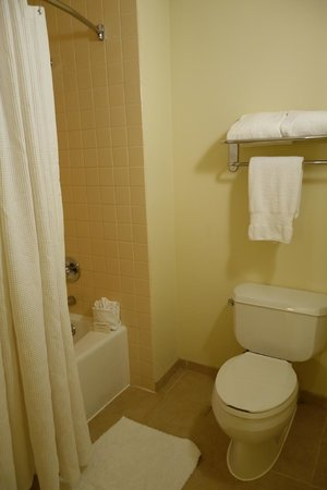 Hilton Houston Post Oak by the Galleria: Bathroom