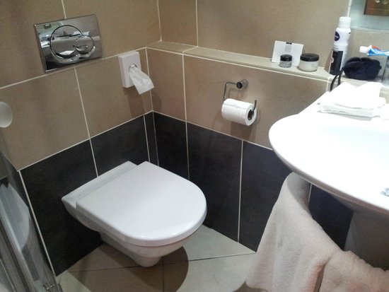 Europa Hotel - Belfast : Modern but Tiny bathroom