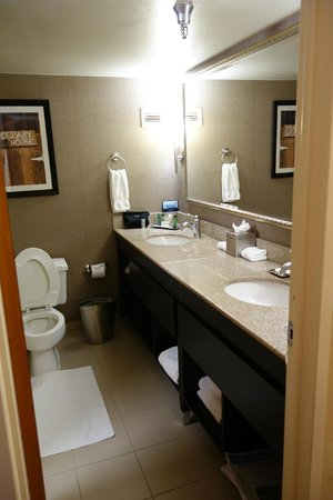 Hilton College Station & Conference Center: Bathroom
