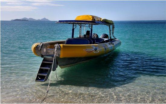 Ocean Rafting: Jammin'