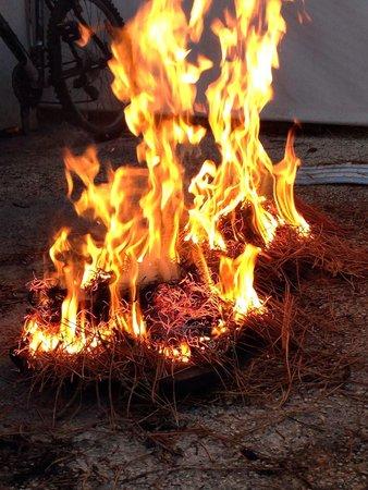 La Cabane : L'éclade de moules se prépare