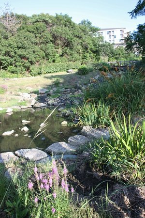 Hotel Kintetsu Aquavilla Ise Shima: Garden