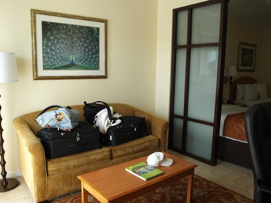 Comfort Suites Paradise Island: chab 584