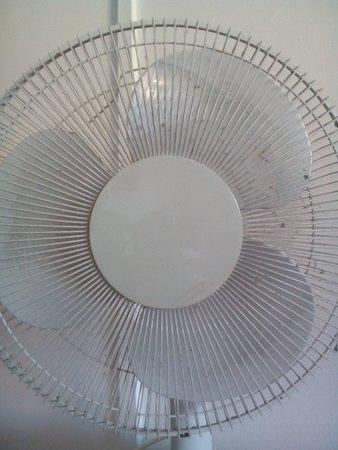 Litus Roma Hostel: Un ventilatore impossibile d azionare x via della polvere e della sporcizia accumulata.Non lo pu