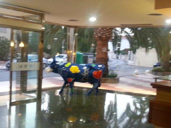 Royal Costa Hotel: Hall...