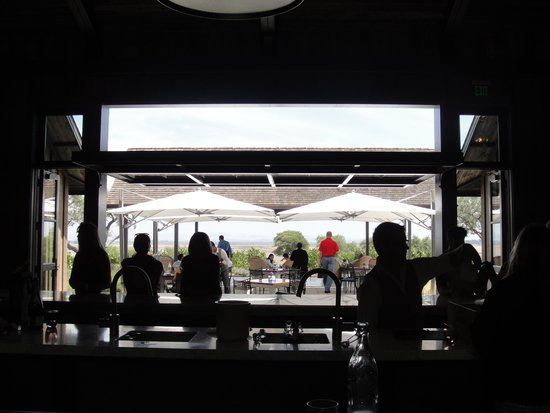 Ram's Gate Winery: View from the bar