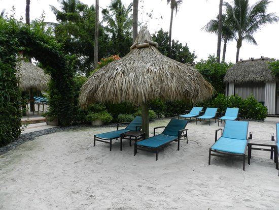 The Palms Hotel & Spa: pool and beach area