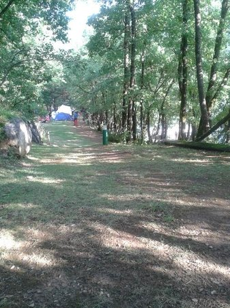 Camping Gavin: View from our tent