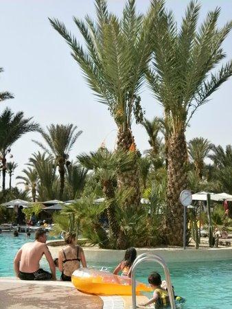 Royal Decameron Issil: Jardin et parc