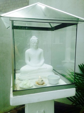 W15 Escape: Bouddha in the garden