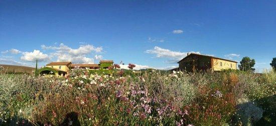 Relais Sant'Elena: Blick vom Pool auf die Gebäude