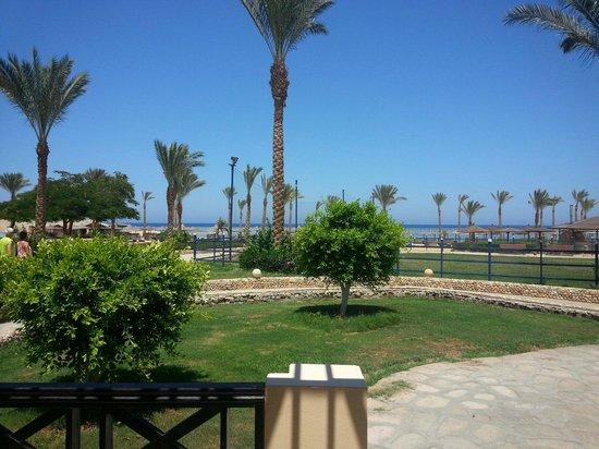 Elphistone Resort: Vista dalla camera