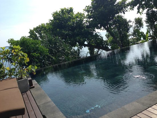The Kala Samui: Infinity pool with beach/sea views