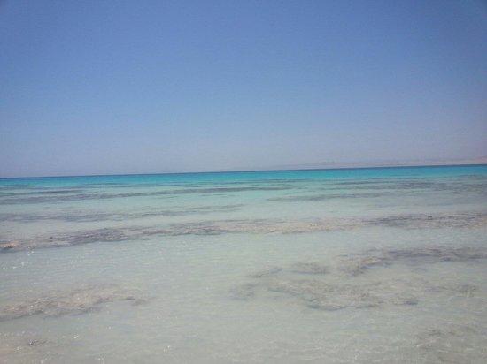 Sharm El Luli