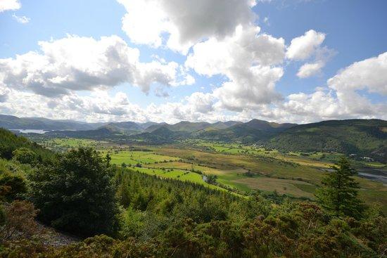 Dodd's Wood Ospreywatch: Bassenthwaite valley from upper viewpoint